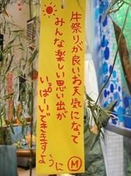 2010-7-7 011.jpg